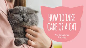 Pet Care Guide Woman Hugging Cat