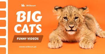 Wild Animals Videos Promotion