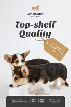 Dog Food Ad with Cute Corgi Puppies