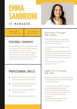 IT Manager professional skills and experience