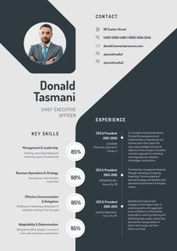 Chief Executive Officer Professional profile
