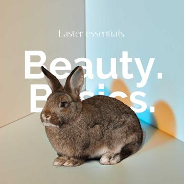 Beauty Easter Offer with Rabbit