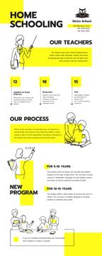 Education infographics about Home schooling
