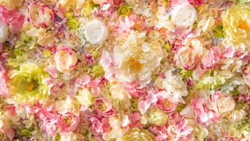 Beautiful tender Flowers Roses