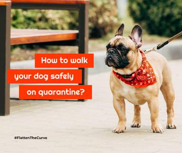 #FlattenTheCurve Walking with Dog during Quarantine