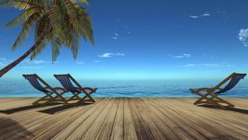 Wooden pier and Palm near the Sea