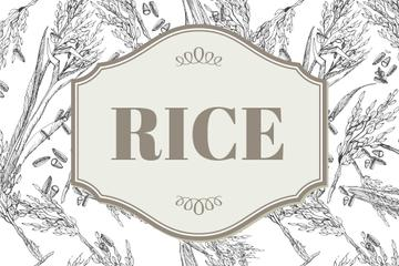 Rice products company ad