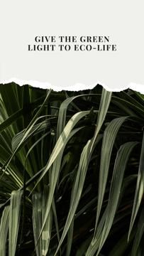 Ecological Company promotion