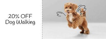 Flying Dog for Walking Services offer